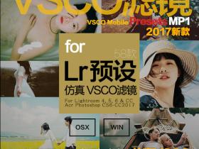 VSCO全滤镜转LR预设Lightroom Presets MP1人像日系婚礼LR预设